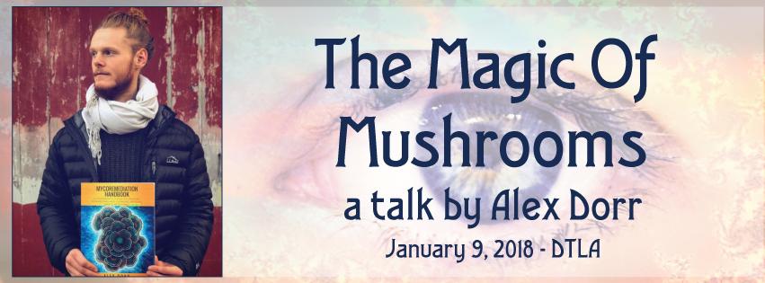 Psilocybin mushrooms Alex Dorr