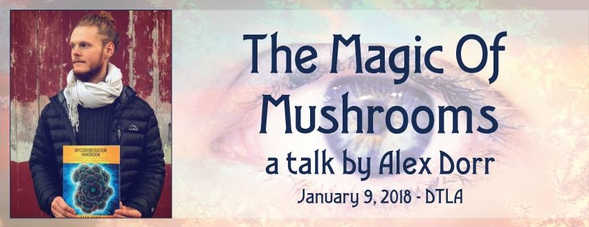 Alex Dorr magic mushrooms aware project