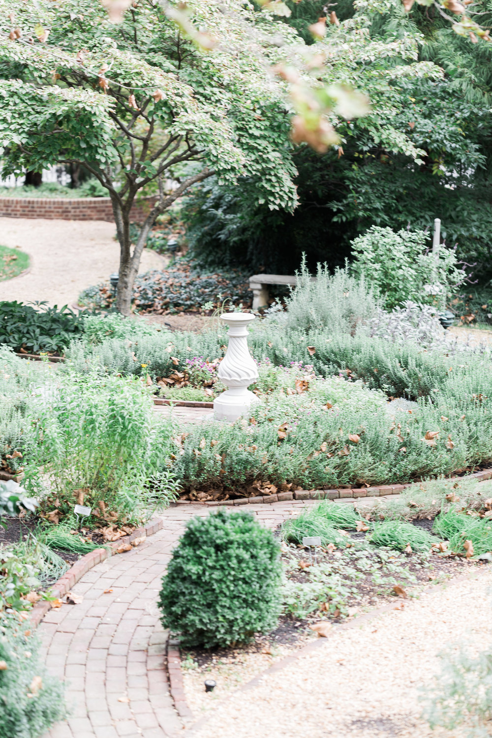 dumbarton-house-garden