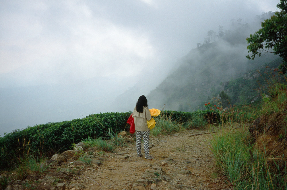 Shruti Swamy walking in northern California, Photo Credit: Abe Bingham
