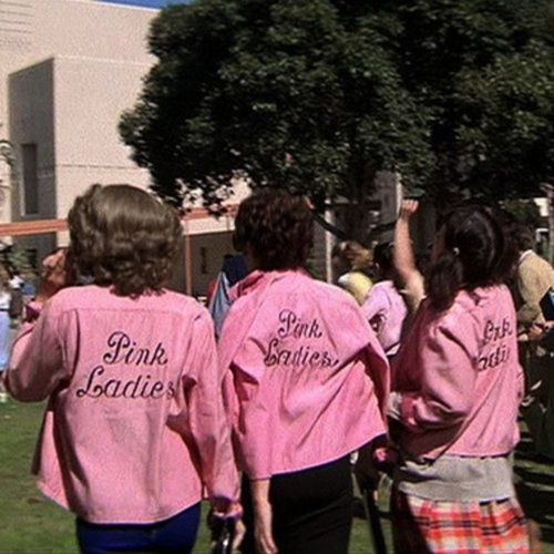 afec992c61d6141a910702ffc8360146--pink-ladies-grease-girl-gang.jpg