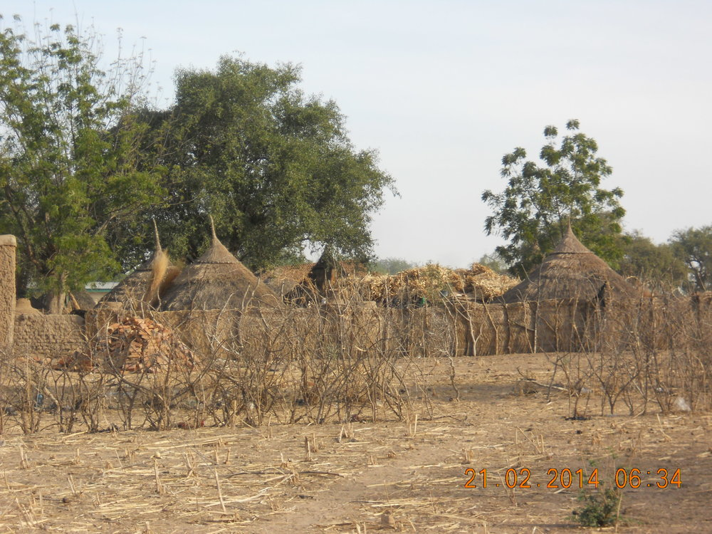 A picture of a Dadjo village taken by Pastor Paul Pease, when a group from Hook Church had the opportunityto visit Chad.
