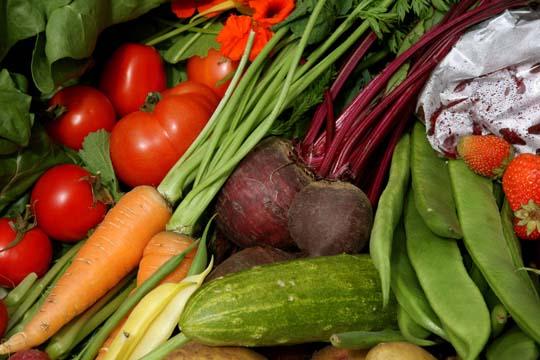 veg-basket-2.jpg