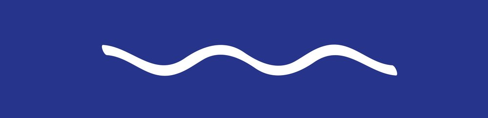 MJ Waves Logo (3).jpg