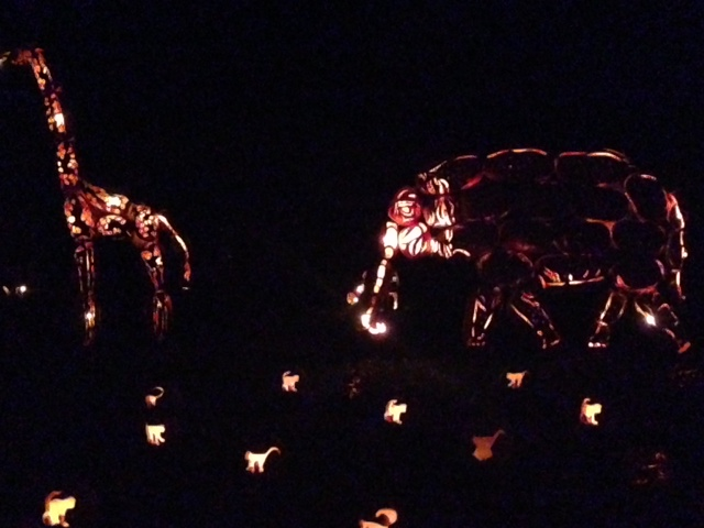 Who needs a zoo when you can have pumpkin animals?