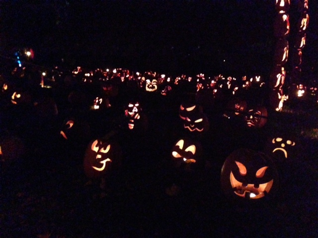 "Lots of really cool pumpkins along the lawn at ""The Great Jack O'Lantern Blaze"""