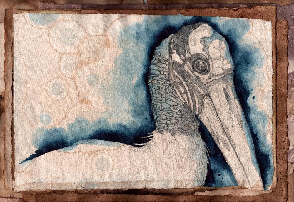Bird 2- Scan 1.jpg