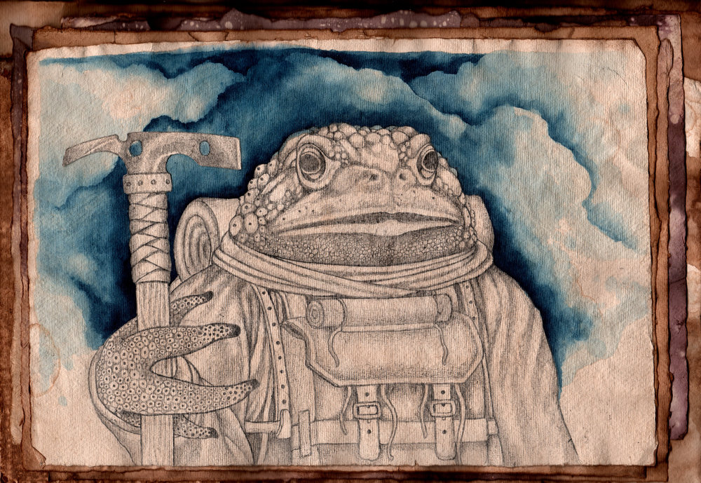 Toad 3.jpg