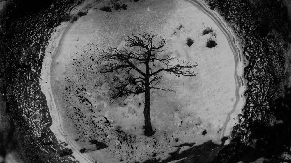 to winter 2.jpg