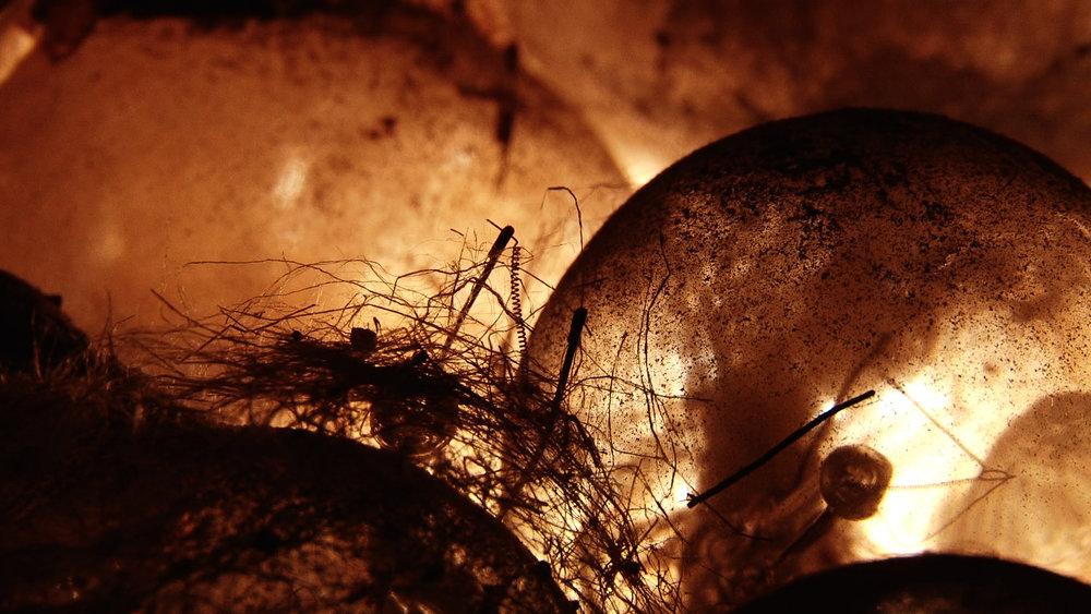 Lightbulb Landscape 13-2 use.jpg