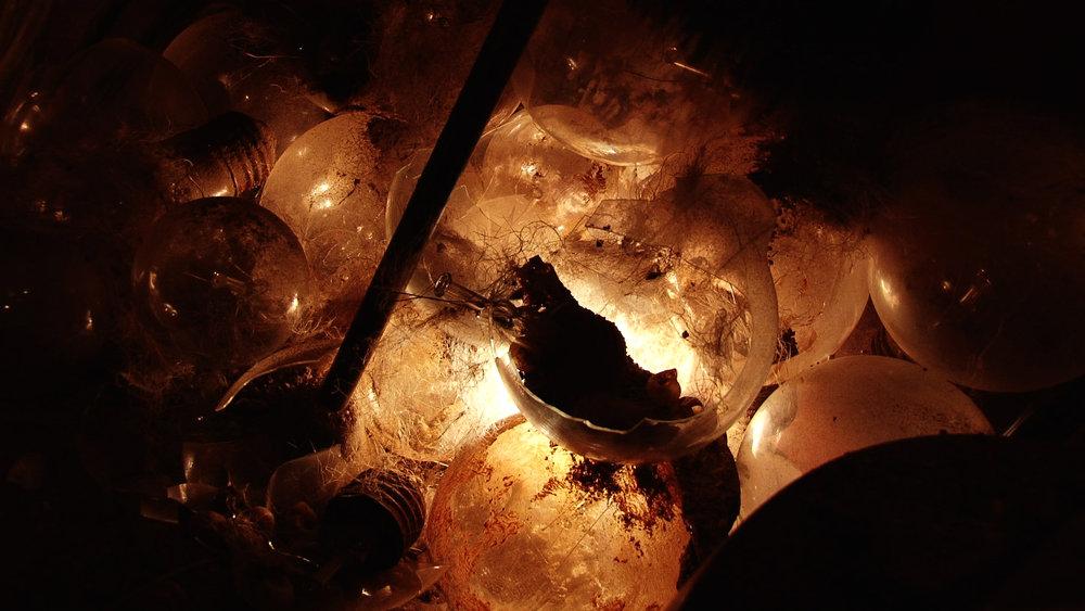 Lightbulb Landscape 24.jpg