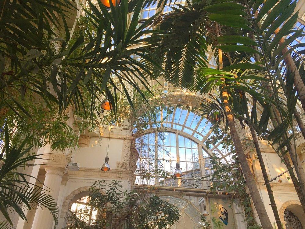 Inside the Cafe Palmenhaus