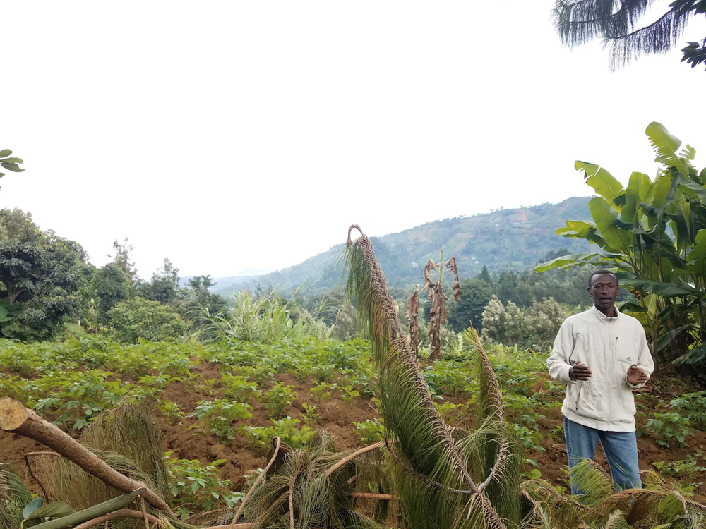 A local farmer explains his farming methods, which include using potatoes and banana trees to reduce soil erosion.