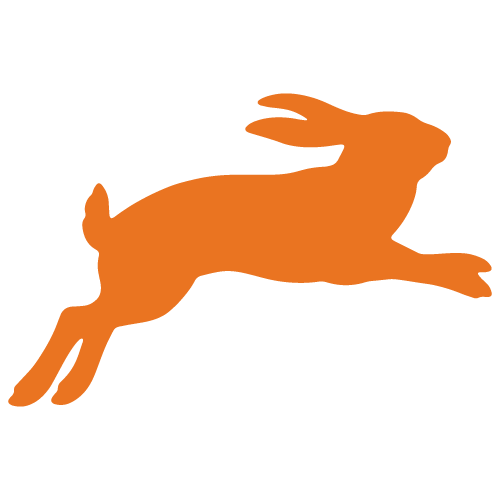 Just-Bunny_orange_preview.png
