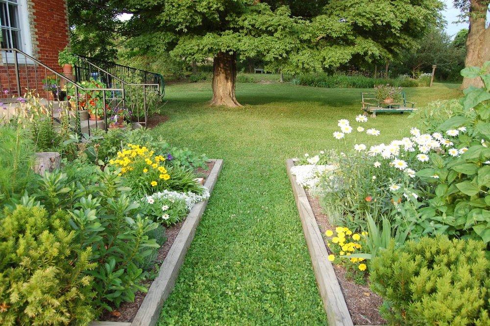 June Garden:sizedJPG.JPG