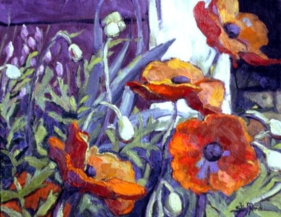 oriental poppies 16 x 19