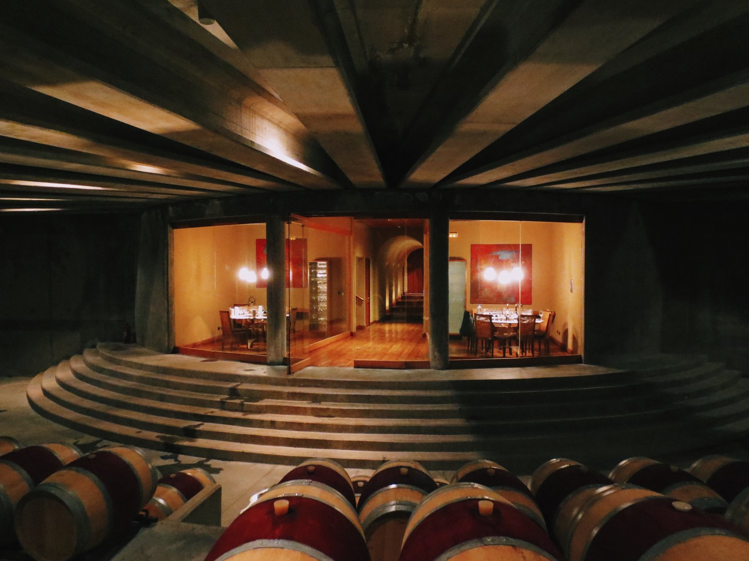 montes chile vineyard wine photography barrel room