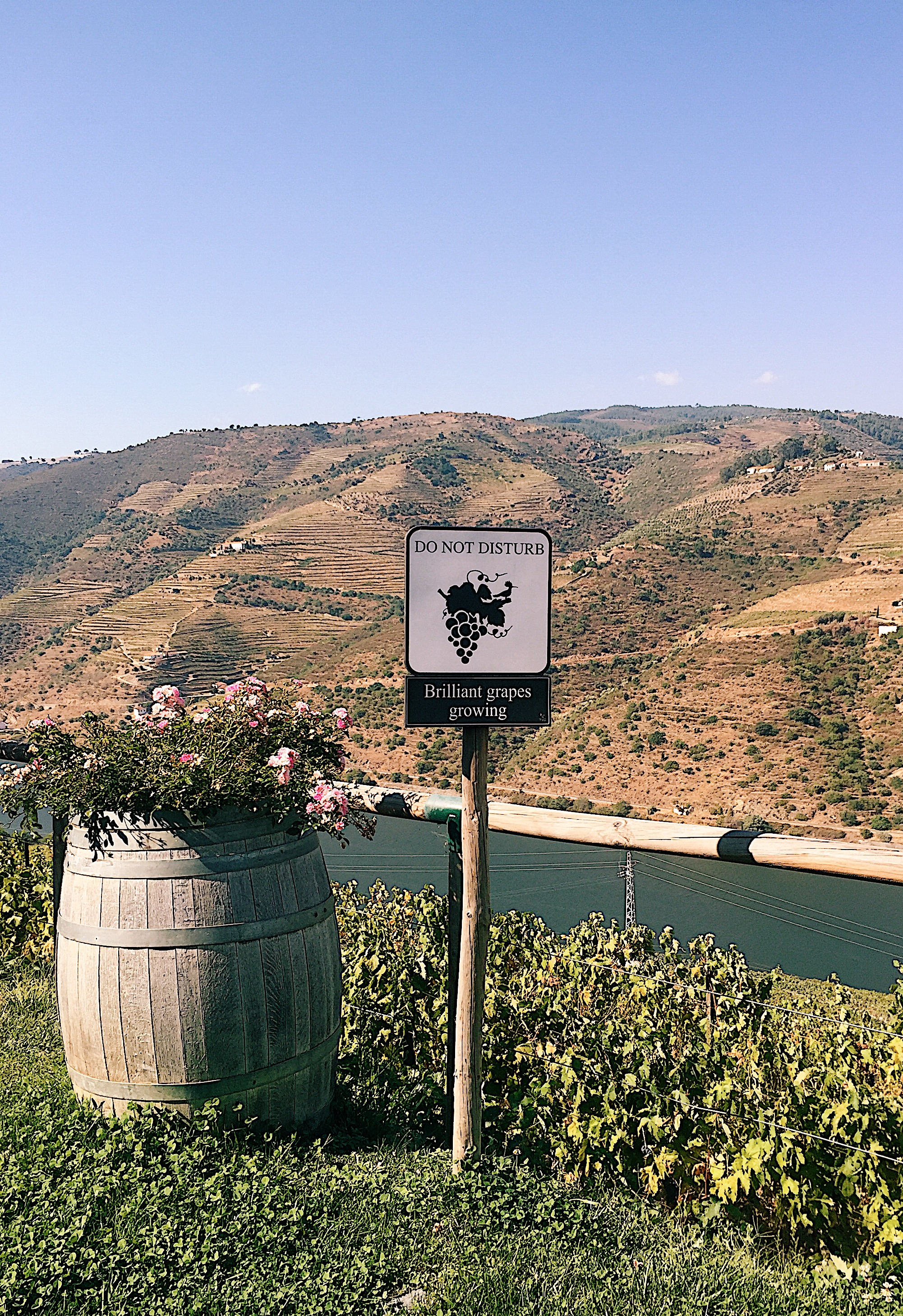 quint do popa douro valley view
