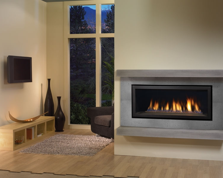 Regency's Contemporary Collection     View More Models and Specs   The HZ40E is only one example of this contemporary line. You can add a tasteful surround in a variety of modern finishes or enjoy a clean finish with no louvers or faceplates.