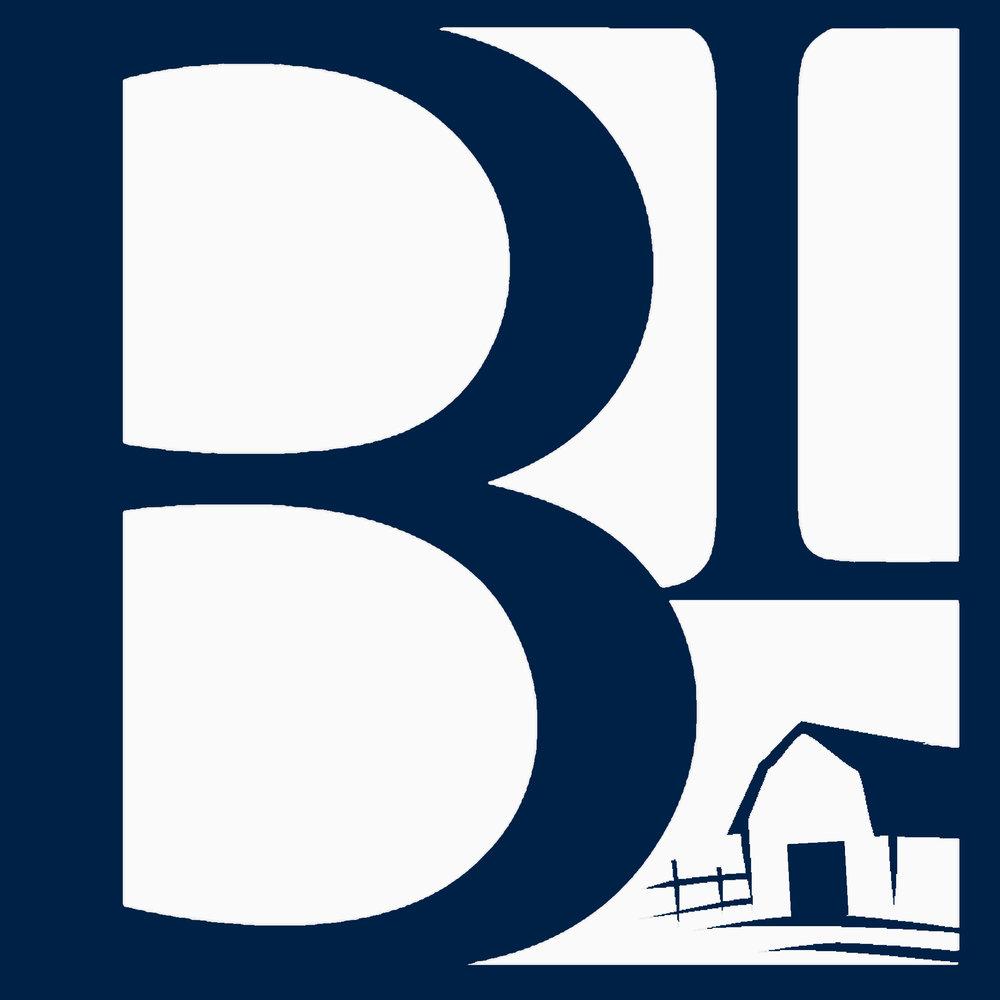 Blue BL.jpg