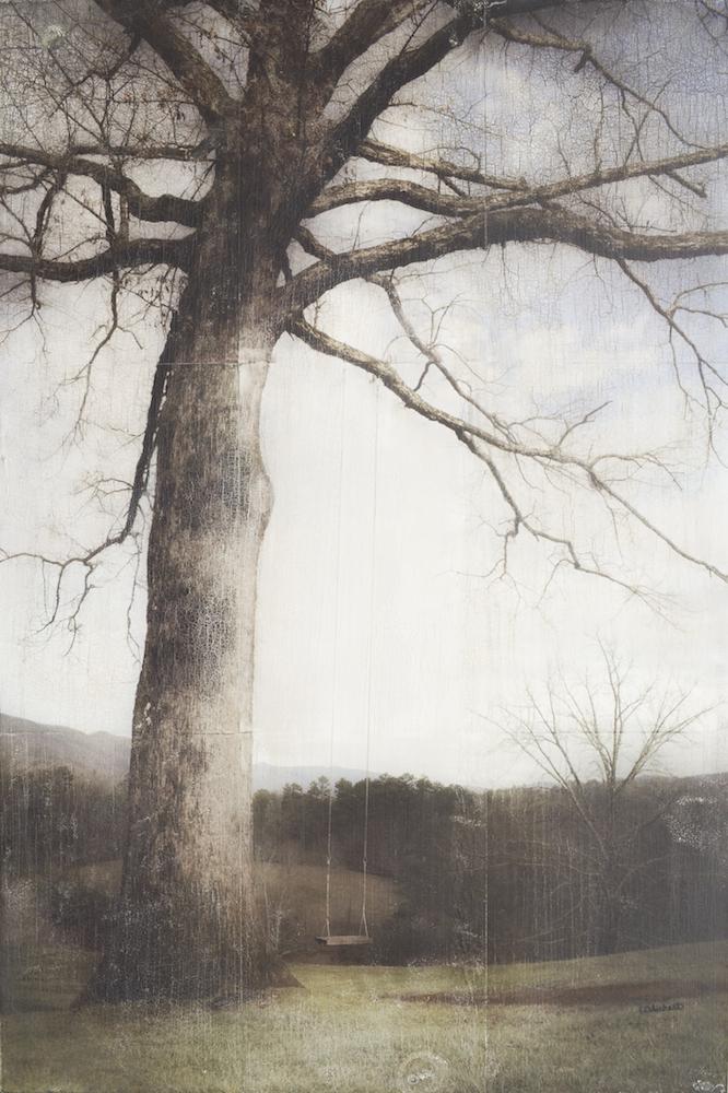 winter tree swing 30x20, 2016 web.jpg