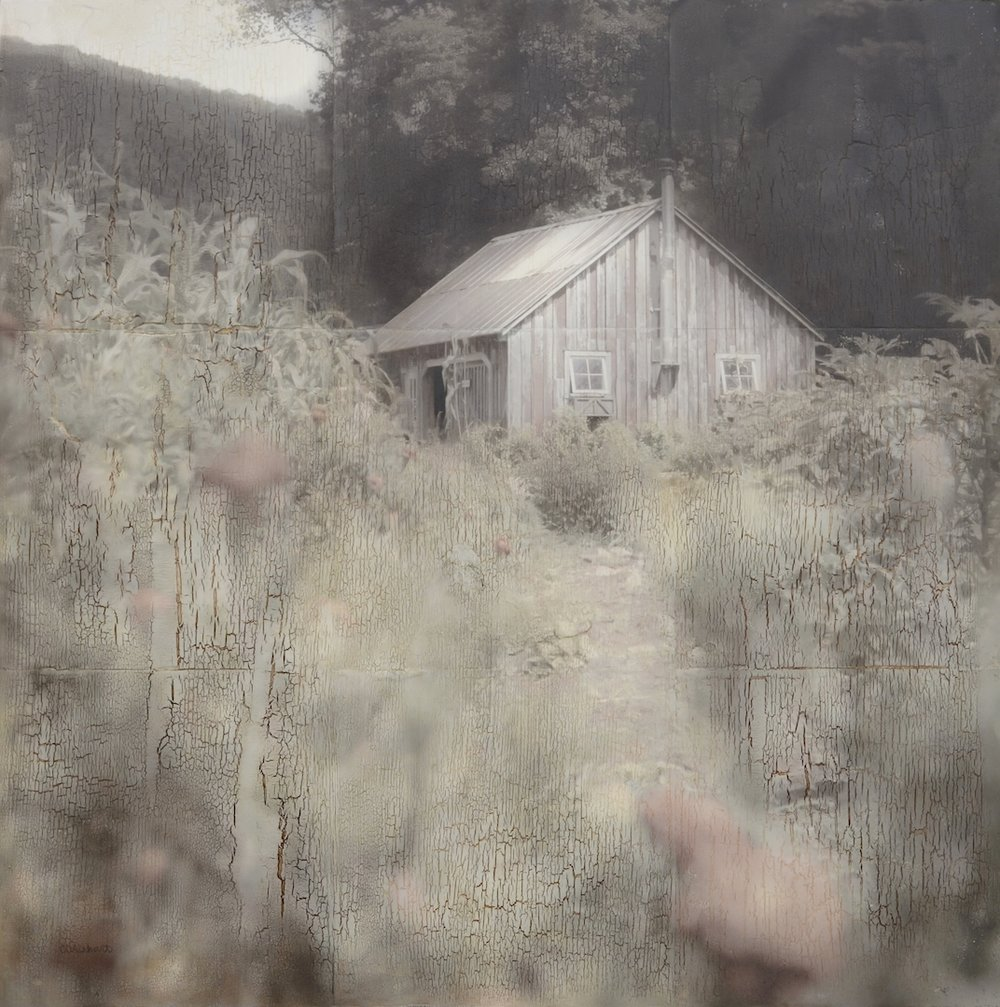 Garden Shed III, pigment transfer on panel with acrylic, pencil, oil and wax medium, 24 x 24 in., 2015 web.JPG