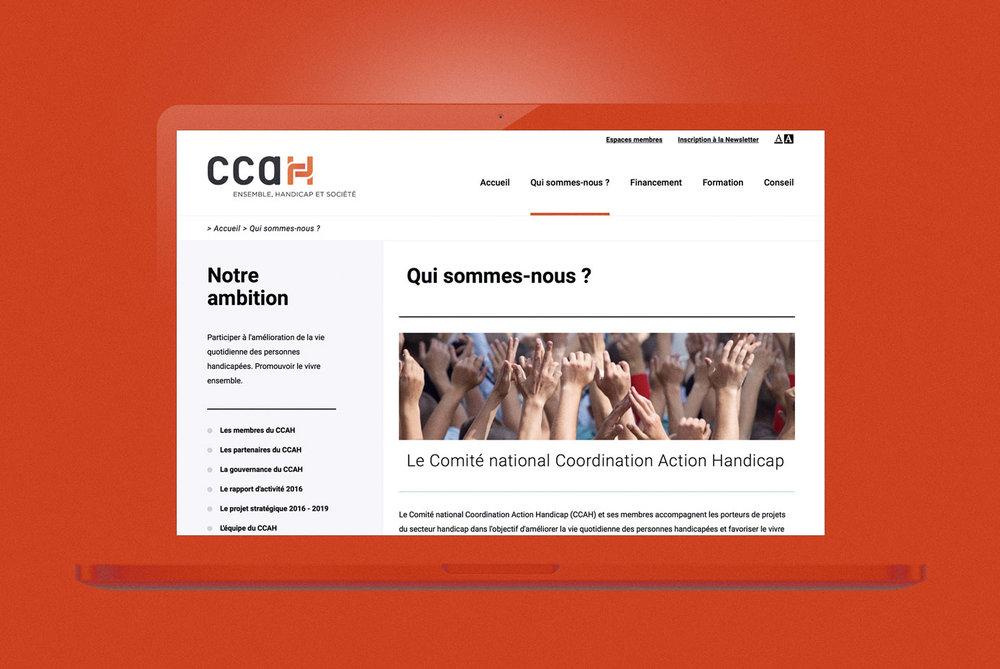 remiisrael-web-design-CCAH.jpg