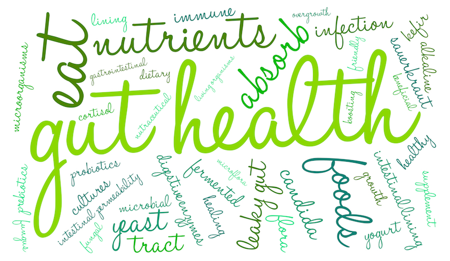 bigstock-Gut-Health-Word-Cloud-93732419.jpg
