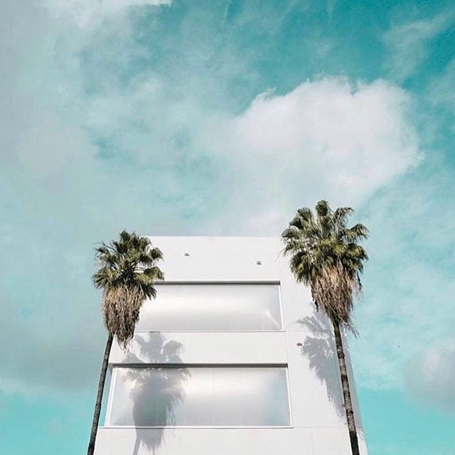 Yes, it's Friday!! And yes, it's snowing here in #NY but we can still dream of sunny skies and palm trees 🌴🌞 #dreamer #dreamerswim #swimwear #beachlife #beachstyle #la #palmtrees #sun #bluesky #friday