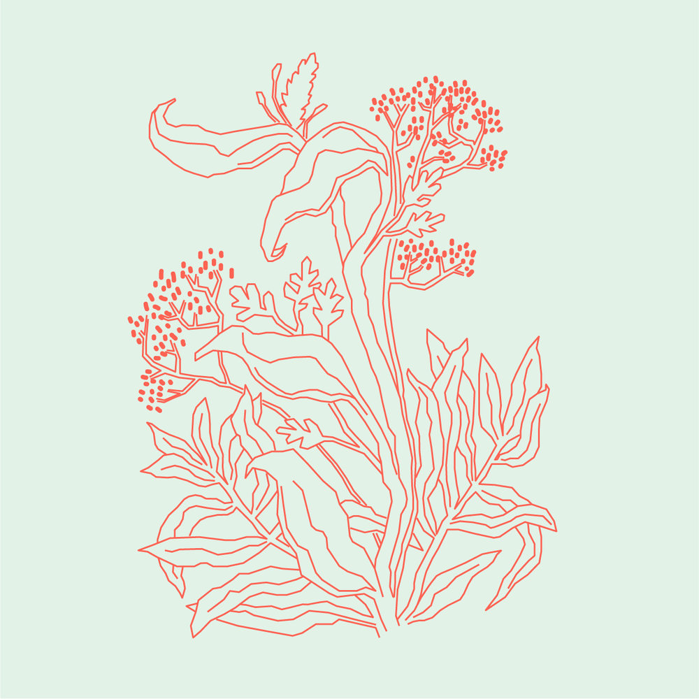 red_flowers-05.jpg