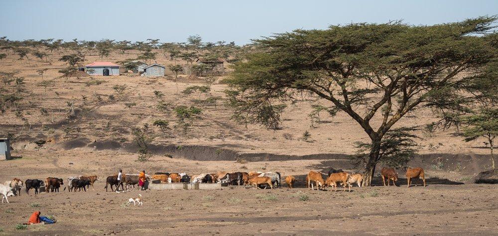 Endonyio Sidai landscape