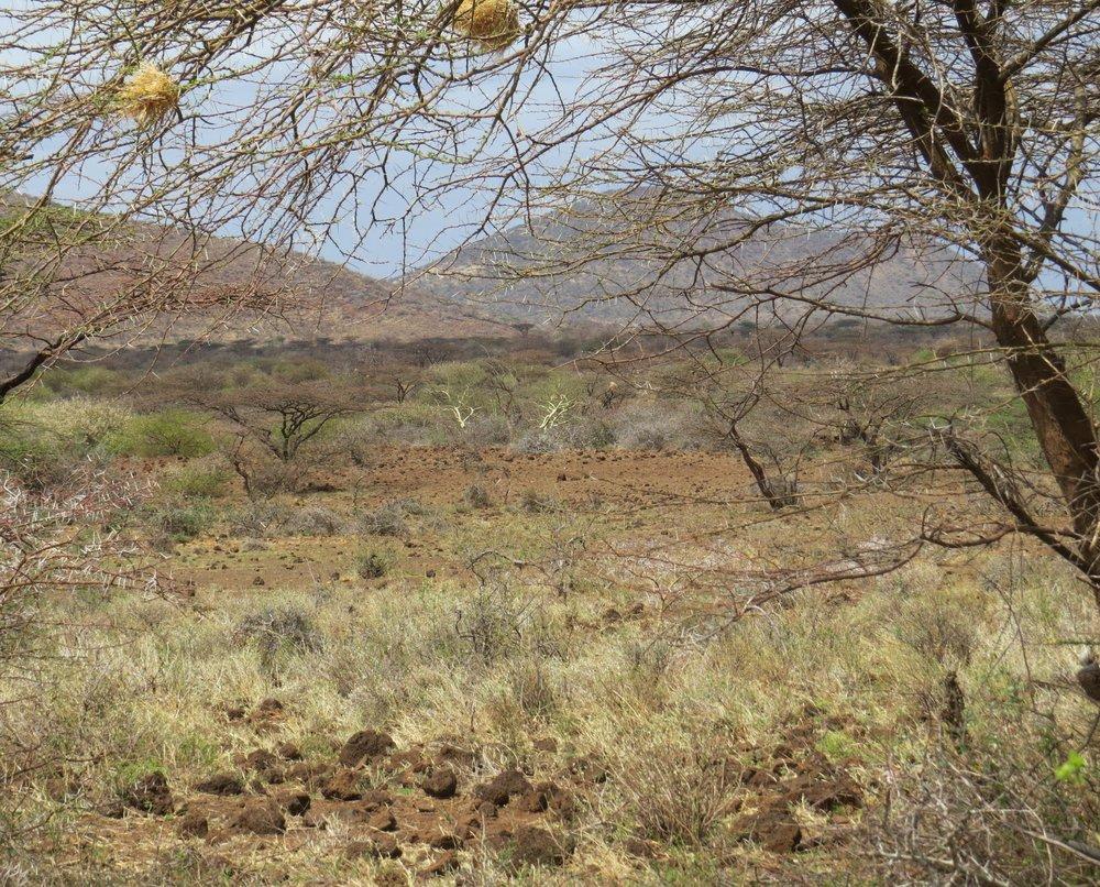 Kachiuru landscape