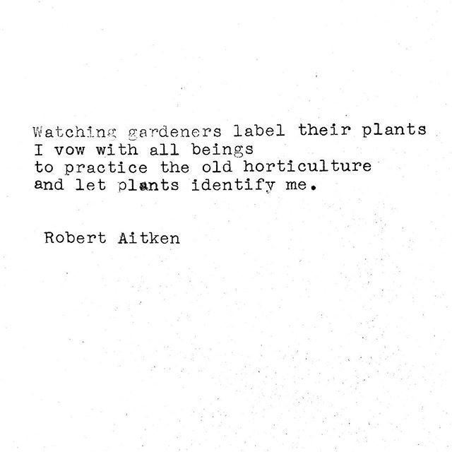 #paulaitken poem truth