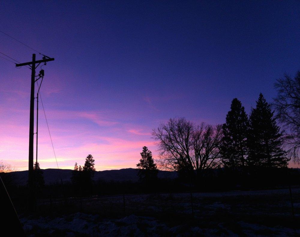 Montana Dawn