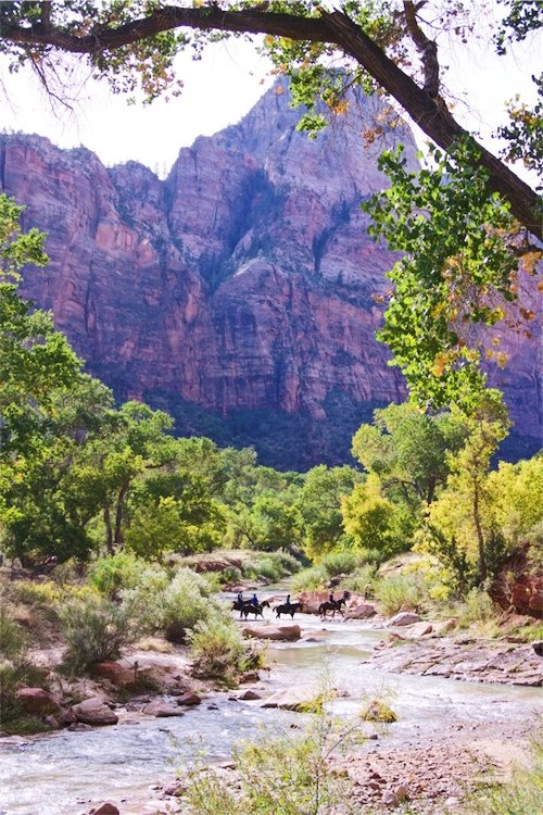 Zion+National+Park.jpeg