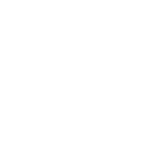 Evolve Dating Gurus