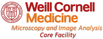 Microscopy and Image Analysis Core Facility