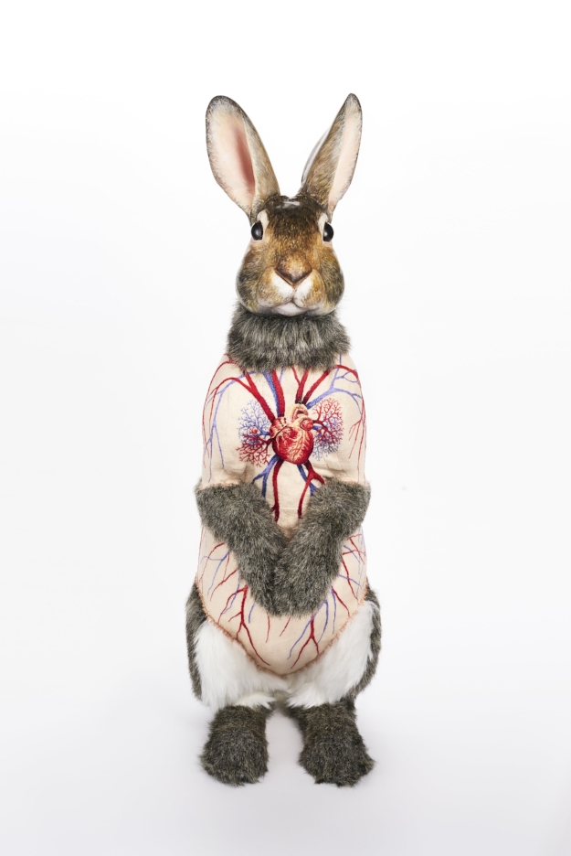 """Flayed Rabbit; Cottontail Deborah Simon polymer clay, faux fur, linen, embroidery floss, acrylic paint, glass, wire and foam 25""""H x 10""""D x 9""""W 2016"""