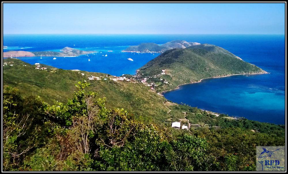 99-©RPD-Virgin-Islands-Resort-Swimming-Pool.jpg