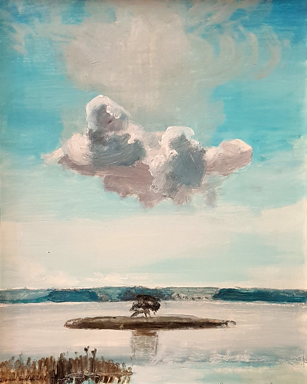 The tree and the cloud