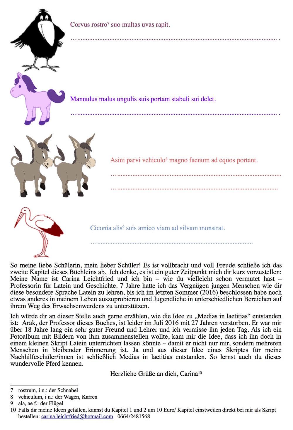 Medias in laetitias - das etwas andere Begleitbuch für den Lateinunterricht