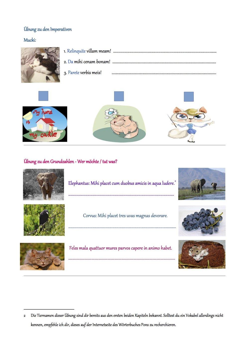 Medias in laetitias - das etwas andere Begleitbuch für den Latein Unterricht