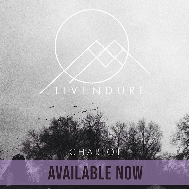"My first single ""Chariot"" is now available everywhere! Note: If you're a Spotify user, could you do me a HUGE favor, and ""Follow"" Livendure and ""Save"" and/or ""Add to Playlist"" my song? This tells Spotify's algorithm that real people (not bots) are enjoying (hopefully) my music, and thus it's worth sharing to other people who may also like it.  LINK IN BIO!  Official album 'Gray' release day is Thursday May 9th! 😁😁 #newmusic #newrelease #indiemusic #independentartist #indiepop #electronicmusic #chill #diymusic #Livendure #gray #chariot #Reno #renomusic #nevada  #Spotify"