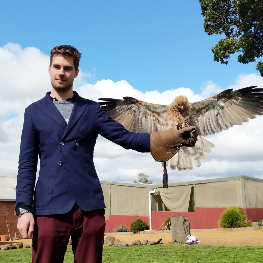 Hawk Vision 2.jpg