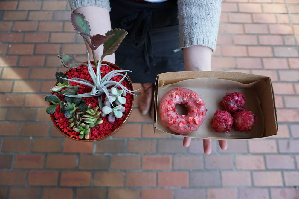 RAISED DOUGHNUTS x BLOSSOMS  2.14.2018 We partnered with Blossoms in Renton for Vday! A box of raspberry holes and a strawberry doughnut to share with your boo!