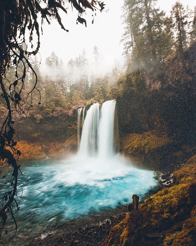 The PNW waterfalls are calling. I recently got lost in @zackkcore feed, be sure to check him out for your PNW vibes.  How are you guys liking the photo and video slideshows? I think I'm going to try and keep it up