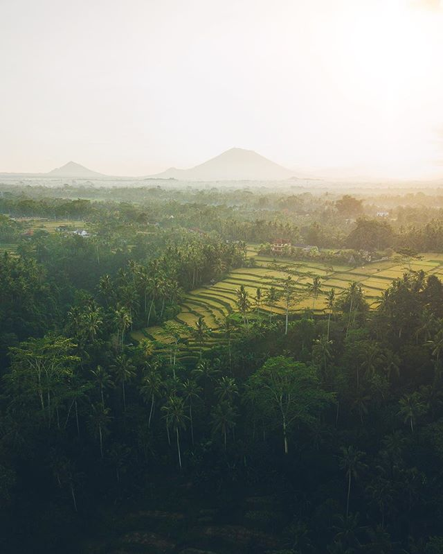 Some photos from my travels to Bali that never got posted #bali #indonesia