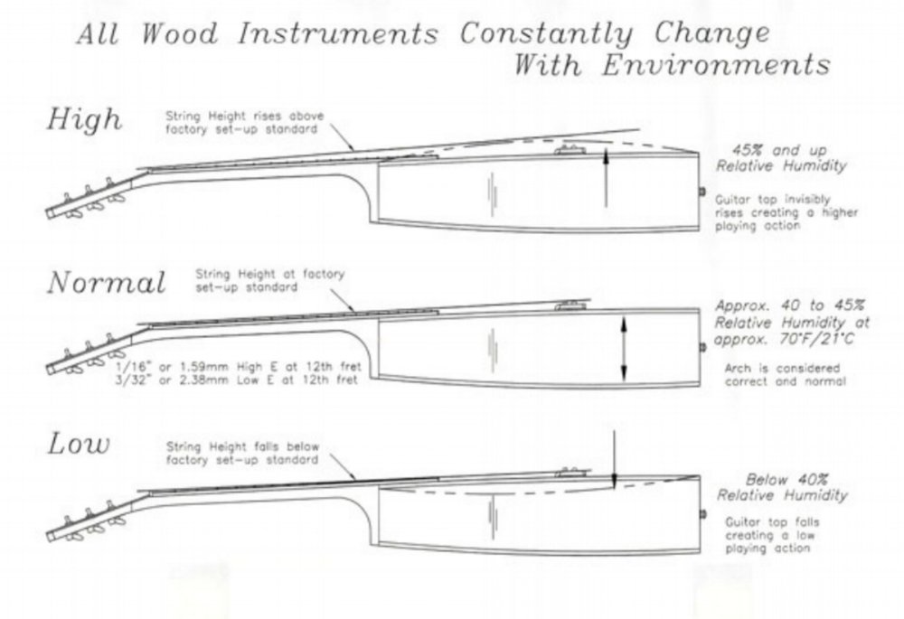 Diagram:  Gibson Guitar