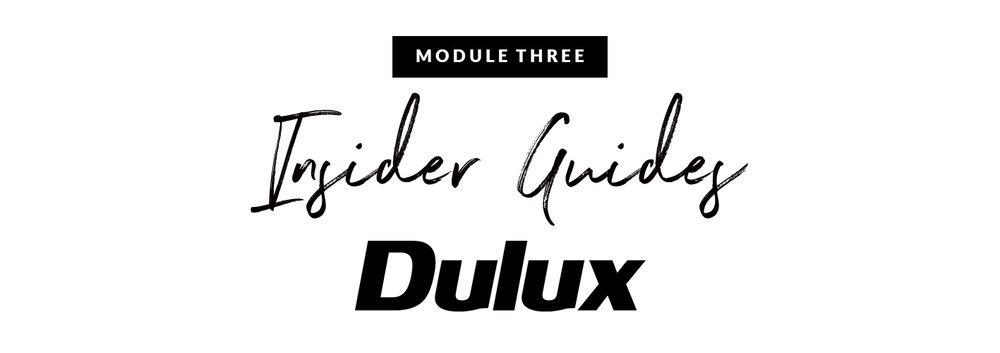 mod 3 insider guide.jpg