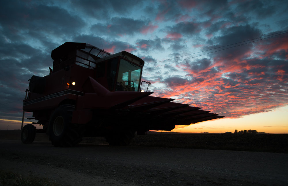 A farmer guides his combine towards home under a dramatic sunset filled sky. This year's harvest is in its twilight. When finished, Iowa farmers will have harvested nearly 415 million bushels of soybeans and 2.2 billion bushels of corn despite a growing season that included spring floods and a fall drought. Many attribute the tremendous bounty to better farming methods and advances in biology that make crops more resilient.